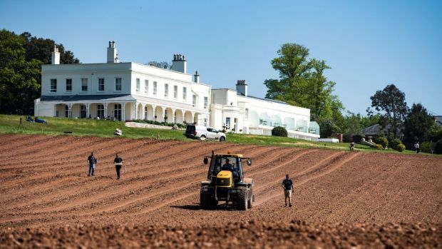 The vineyard at Lympstone Manor, overlooking the Exe estuary, between Exeter and Exmouth, which is owned and run by Michelin star chef Michael Caines
