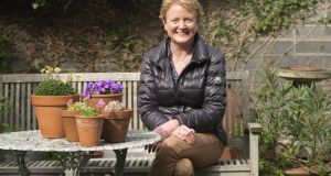Triona Noonan  in her garden in Dun Laoghaire with some of her prized alpine and rock plants Photo Credit Richard Johnston
