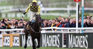 Paul Townend on Al Boum   celebrates victory in the Magners Cheltenham Gold Cup on Gold Cup Day at Cheltenham Racecourse on March 15th. Photograph: Michael Steele/Getty Images