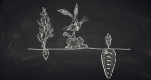 The idea of positive thinking as a form of magic that can breed rabbits in the fields of Britain runs counter to reality. Photograph: iStock