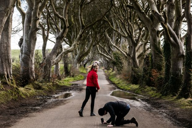 Game of Thrones: the Dark Hedges provided an atmospheric backdrop. Photograph: Robert Ormerod/NYT