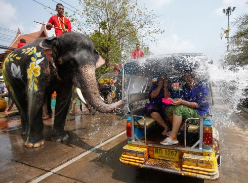 GET YOUR FEET WET: An elephant sprays water on revellers in a tuk tuk during a preview of the Songkran Festival, in the city of Ayutthaya, Thailand. Photograph: Rungroj Yongrit/EPA