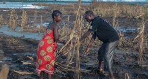 Farmers Malita (25) and Nelson (44) inspect what is left of their crops after flooding in Nsanje, Malawi. Their crop was ruined just one month before  harvest. Photograph: Gavin Douglas/Concern Worldwide