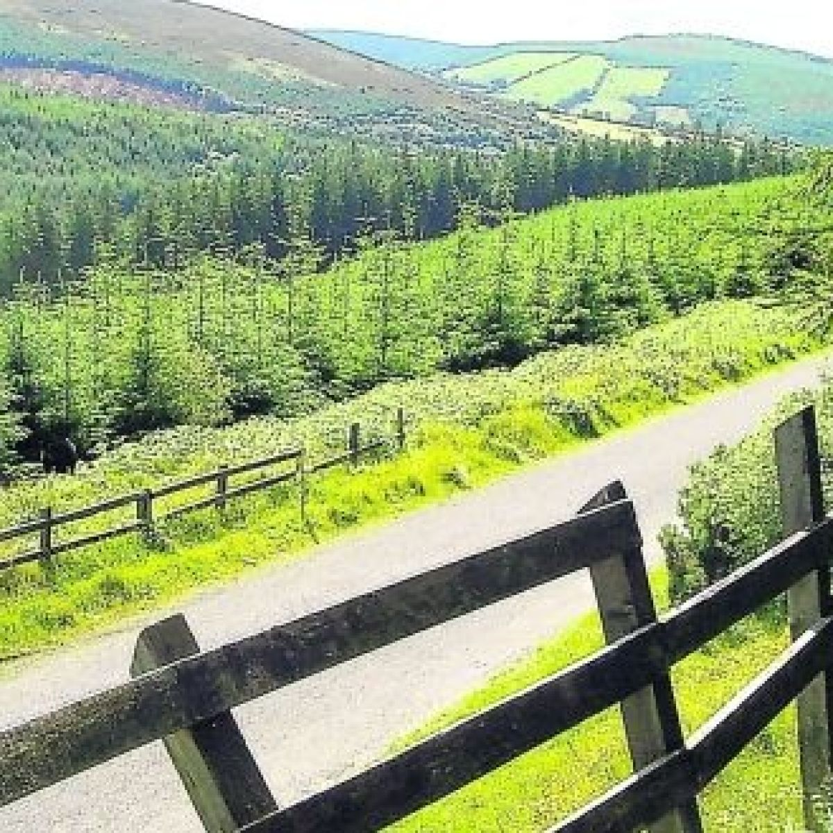 Crookstown Leinster Ireland to Kildare - Rome2Rio