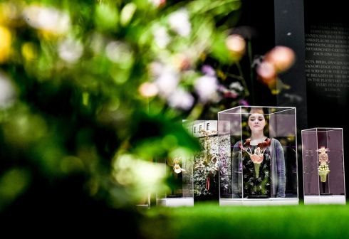POWER PLANTS: A woman observes artworks during a preview of an exhibition on plants and humans, in Dresden, Germany. Photograph: Filip Singer/EPA