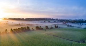 "The sun rises to dispel the fog in rural Tipperary. ""Our ancestors woke up to birdsong and light,"" says Niall Hatch of Birdwatch Ireland."