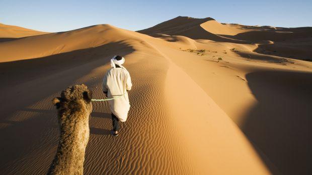 """Résultat de recherche d'images pour """"sahara"""""""