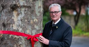 Councillor Paddy McCartan and his supporters are tying ribbons around the trees that may be  cut down for the BusConnects programme on Merrion Road, Dublin. Photograph: Tom Honan