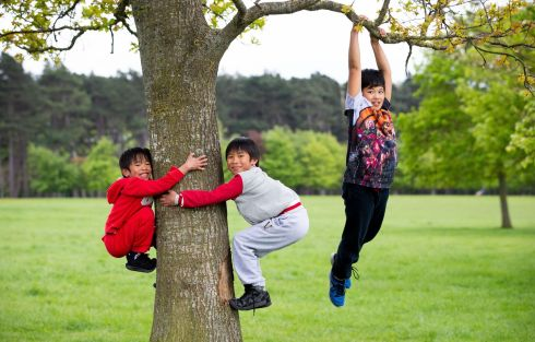 FANCY FOOTWORK: From left, brothers Terrence (7), Timothy (9) and Troy  Ermitano (10), from Dublin, hanging out in the Phoenix Park in Dublin. Photograph: Tom Honan