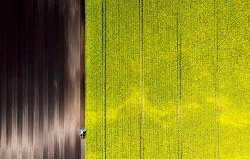 DRONE'S EYE: A tractor is used to plough soil next to a rapeseed field sporting bright yellow flowers in Bavois, Switzerland, in a shot taken from a drone. Photograph: Laurent Gillerion/EPA