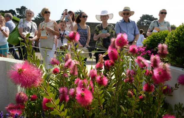 Bloom gardening festival: the 2018 event attracted almost 120,000 visitors. Photograph: Cyril Byrne