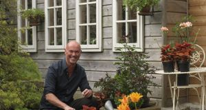 TJ Maher in his garden Patthana in Co Wicklow, planting summer containers. Photograph: Richard Johnston