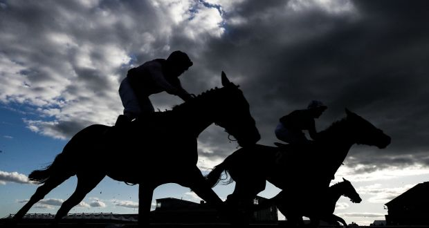 Authority points to improved tracing after horse abandoned