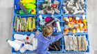 Soft plastics should go into the general waste bin as they are not currently accepted in the recycling bin. Photograph: iStock
