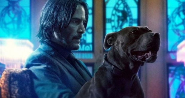 Two mutts: Keanu Reeves in John Wick: Chapter 3 – Parabellum