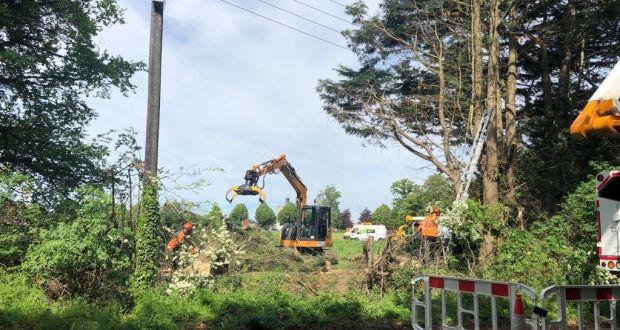 Residents of Dublin neighbourhood dismayed as trees felled for housing