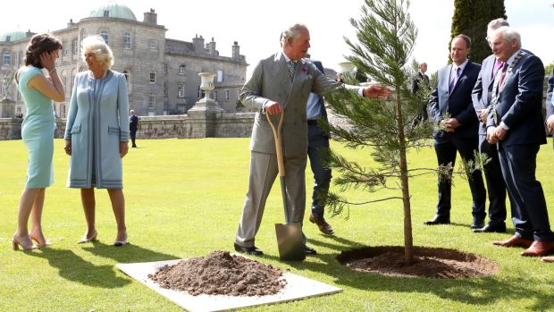 Prince Charles plants a tree ahead of a civic reception at the Powerscourt House and Gardens in Enniskerry, Co Wicklow. Photograph: Chris Jackson/Getty Images