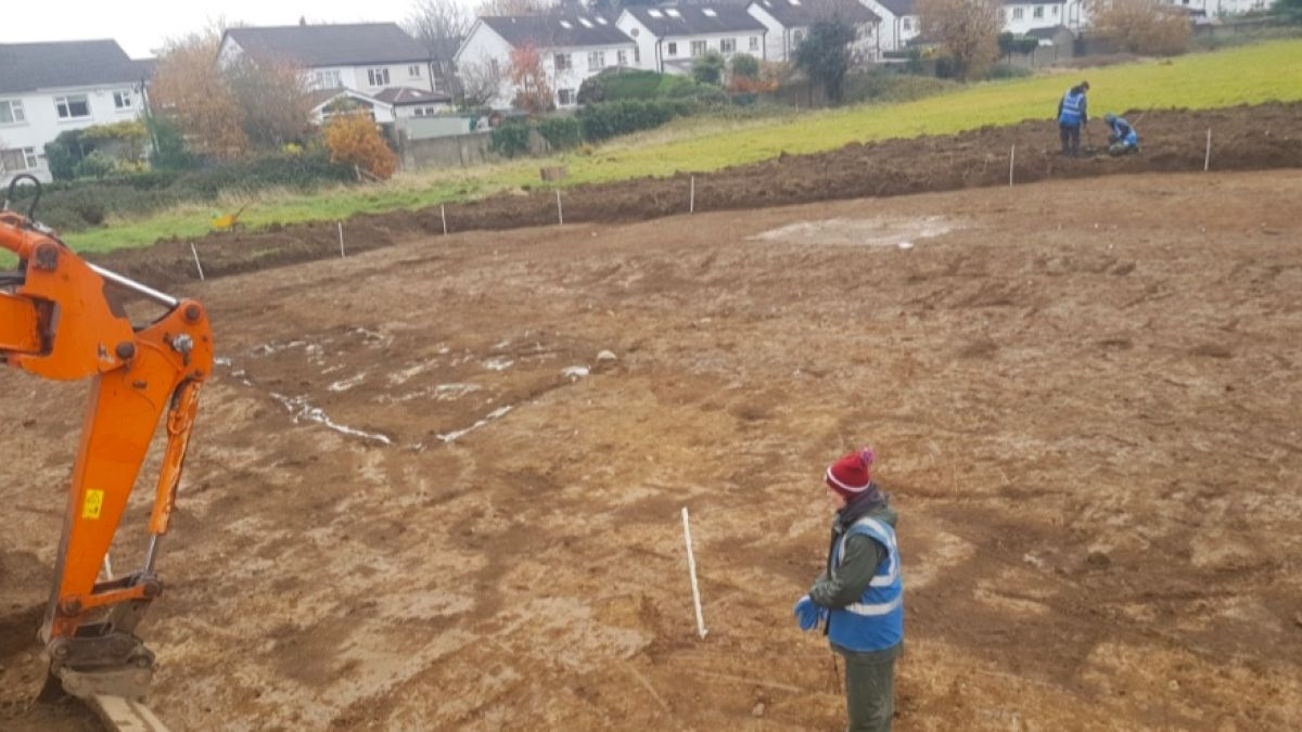 Medieval burial ground for 80 bodies found on Cosgrave land