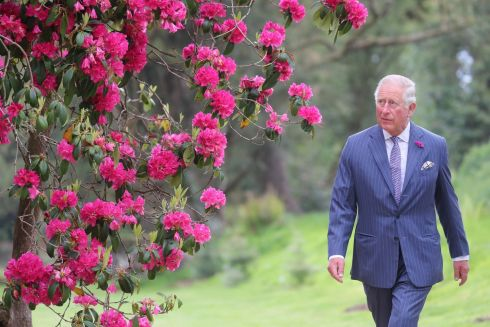 COUNTRY WALK: Charles, the Prince of Wales, on a visit to Kilmacurragh Botanic Gardens, Kilbride, Co Wicklow, during the second day of the royal visit to Ireland. Photograph: Chris Jackson/PA Wire
