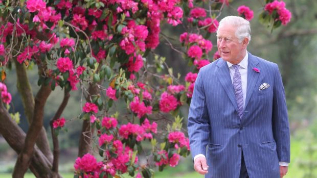 Prince Charles seemed quite taken with the National Botanic Gardens in Co Wicklow. Photograph: Chris Jackson - Pool/Getty Images