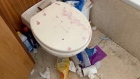 Video footage shows filthy state of Dublin 4 house after tenants leave