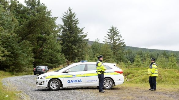 Gardaí at the scene in the Dublin mountains where the remains of Michael McCoy were found. Photograph: Cyril Byrne