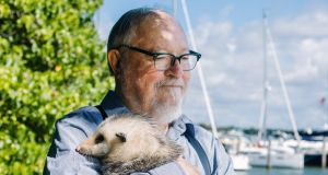 Fans have wondered for years how Thomas Harris, shown cradling a rescued possum named Bruce, comes up with his characters. 'You don't have to make anything up in this world,' he says. Photograph: Rose Marie Cromwell/New York Times