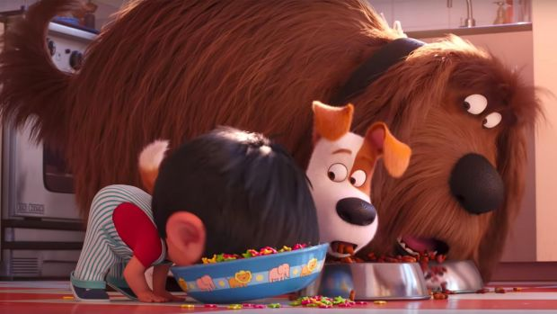The Secret Life Of Pets 2 Talented Voice Cast Lifts This Sloppy Sequel