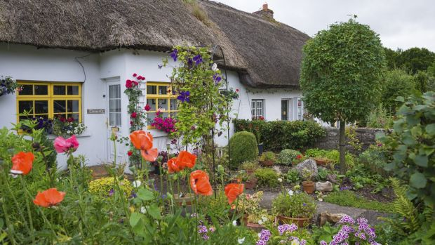 Traditional thatched cottages at Adare, Co Limerick. Photograph: Education Images/UIG via Getty