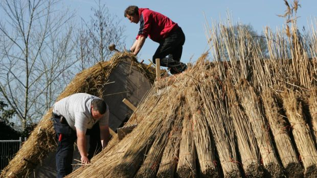 Trainee thatchers Paul Carolan, Navan, and Philip Doran, Kilkenny in action at the FAS thatching course in Portumna Co Galway. Photograph: Frank Miller