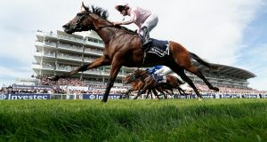 Seamie Heffernan riding Anthony Van Dyck  wins The Investec Derby Stakes at Epsom.  Photograph:  Alan Crowhurst/Getty Images