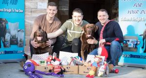 BusterBox co-founders (from left) Gary Redmond, Liam Brennan and Paul Carrick with Coco and Ciro. Photograph: Paul Sharp