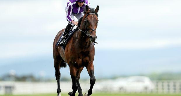Aidan O Brien S Magna Grecia Unlikely To Make Royal Ascot
