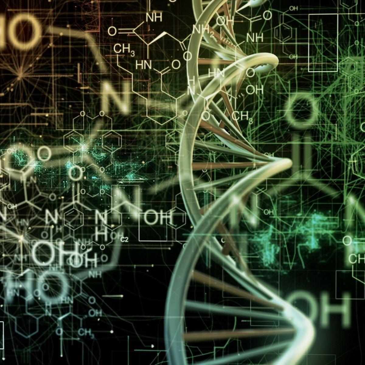 Junior Cert Science: Science teachers slam new common level paper