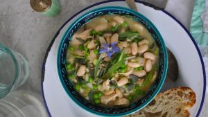 Chicken, tarragon and butterbean stew