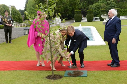 PUTTING DOWN ROOTS: King Willem-Alexander and Queen Máxima of the Netherlands with President Michael D Higgins and his wife Sabina during tree-planting ceremony at Áras an Uachtaráin, Dublin. Photograph: Dara Mac Donaill