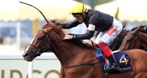 Stradivarius ridden by jockey Frankie Dettori wins the Gold Cup at Royal Ascot. Photograph: Mike Egerton/PA Wire