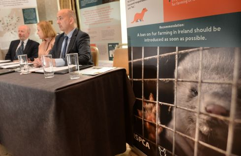 FUR FARMING: Solidarity's Ruth Coppinger is among the attendees at a 'Ban Fur Farming' press conference at Buswell's Hotel, Dublin. Photograph: Dara Mac Dónaill/The Irish Times