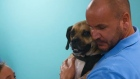 The Supervet: Family reunited with Barney the puggle