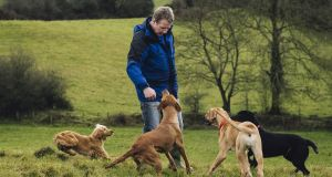 Chris Hanlon: 'My me-time is to take two or three of my own dogs for a run three times a week.'