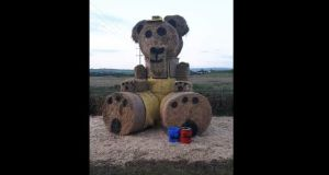 The three-metre high Ted, who is made up of five large bales of straw and 10 square bales of hay, is the mascot for the annual Kilflynn Enchanted Fairy Festival. Image: Facebook.