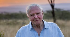 Naturalist David Attenborough has presented a wide range of programmes highlighting the fragility of the environment.