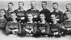 The Roster of the 1885 Chicago White Stockings (known today as the Chicago Cubs) Top Row: George Gore, Silver Flint, Cap Anson, Jim McCormick, Mike 'King' Kelly, Fred Pfeffer; Bottom Row: Jimmy Ryan, Ned Williamson, Abner Dalrymple, Tom Burns, Jim Clarkson, Billy Sunday. Photograph: Wikimedia Commons