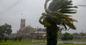 A palm tree blows in the wind in Morgan City, Louisiana as Hurricane Barry approaches the Louisiana coast. Photograph: Bryan Thomas/The New York Times