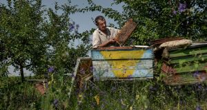 Grisa Muntean, the last remaining resident of Dobrusa,  Moldova, takes care of his bees. 'When I work, I speak with the trees, with the birds, with the animals, with my tools. There is no one else to talk to.' Photograph: Laetitia Vancon/The New York Times