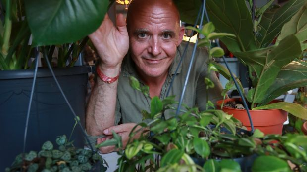The junglalow: Conor Pope with a selection of houseplants he has been tending. Photograph: Crispin Rodwell