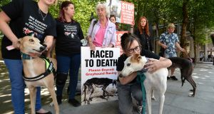 Protesters outside the Department of Agriculture campaign against cruelty to greyhounds. Photograph: Cyril Byrne / The Irish Times