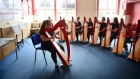 120 young harp pupils benefit from innovative tuition in Laois