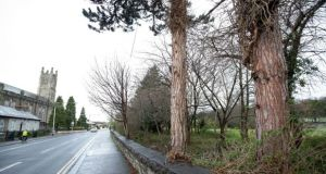 The site at Springvale in Chapelizod opposite the Church of the Nativity. Photograph: Tom Honan