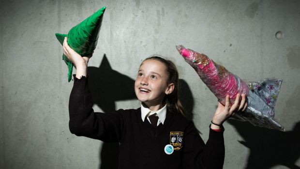 Laurie Murnane from Milford NS, Limerick, at the 2019 ESB Science Blast Limerick who investigated how far will an air powered rocket travel. Photograph: True Media